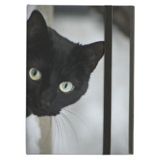 Black Cat Ipad Air Case at Zazzle