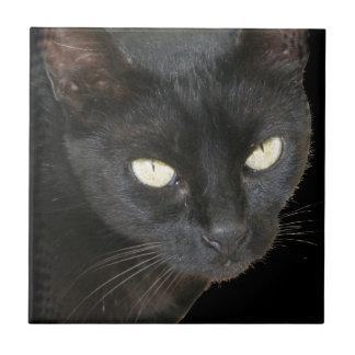Black Cat Isolated on Black Background Tile