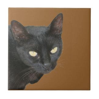 Black Cat Isolated Ceramic Tile