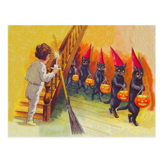 Black Cat Jack O Lanter Pumpkin Broom Post Card