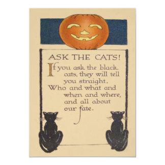 Black Cat Jack O' Lantern Pumpkin 5x7 Paper Invitation Card