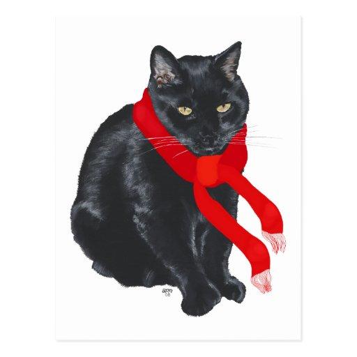 Black Cat Keeping Warm at Christmas Postcards