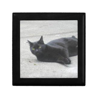 Black  Cat Keepsake Boxes