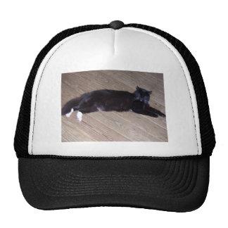 Black Cat Laying down Trucker Hat