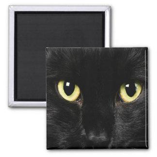 BLACK CAT Locker Magnets, Refrigerator Magnet