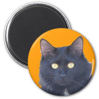 Black Cat Look into my eyes Magnet