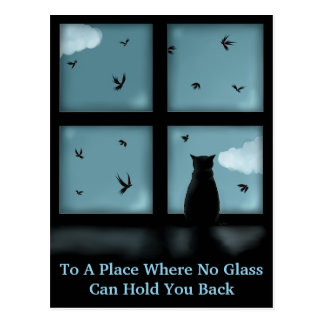 Black Cat Looking Out Window At Heaven Postcard