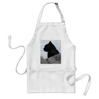Black cat looks away adult apron