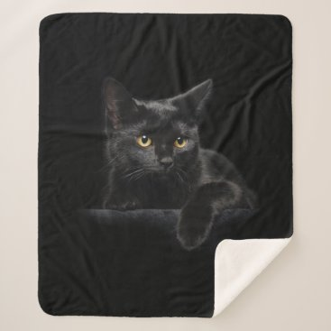 Halloween Themed Black Cat Medium Sherpa Fleece Blanket