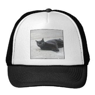 Black  Cat Mesh Hat