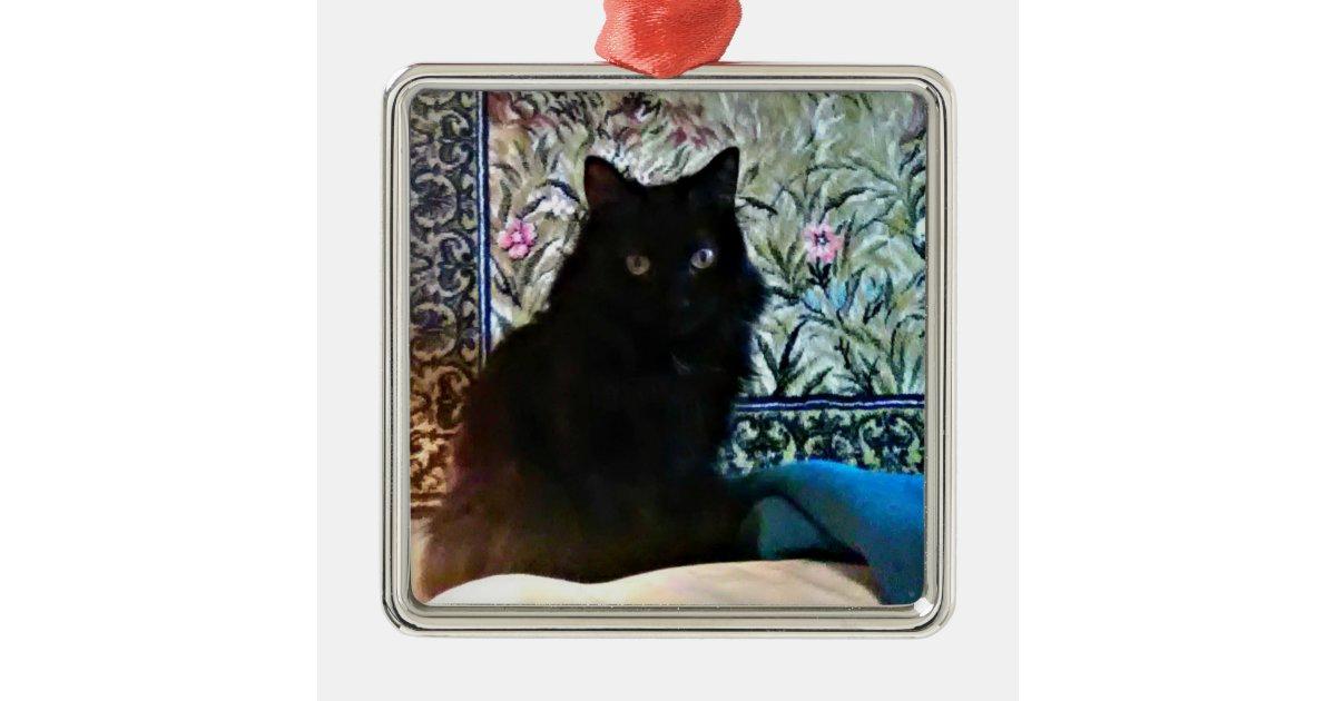 Black Cat Metal Ornament | Zazzle.com