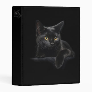 Black Cat Mini Binder