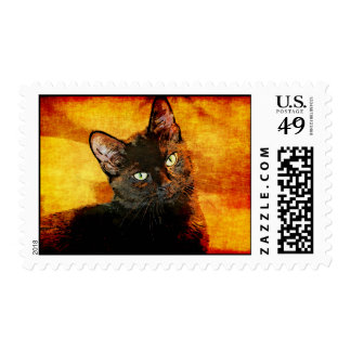 BLACK CAT OLIVE POSTAGE
