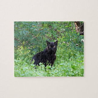 Black Cat on a Spring Day Puzzle