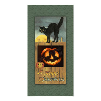 Black cat on a wooden fence with pumpkin card
