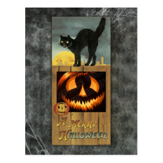 Black cat on a wooden fence with pumpkin postcard
