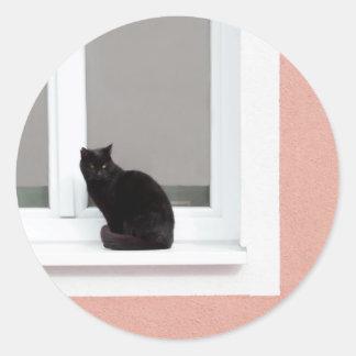 Black Cat on Coral Classic Round Sticker