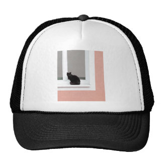 Black Cat on Coral Trucker Hat
