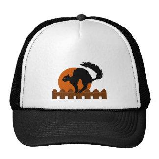 Black Cat On Fence Trucker Hats