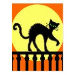Black Cat On Fence Postcard
