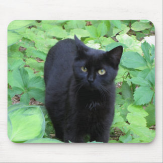 Black Cat on Lime Green plants Mousepad