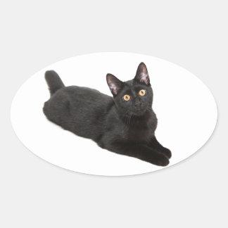 Black cat oval sticker