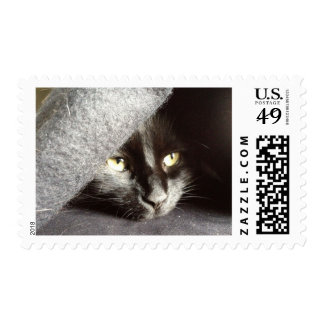 Black Cat Peeking Out From Under a Blanket Postage