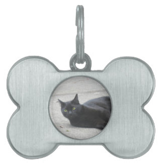 Black  Cat Pet Tag