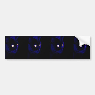 Black Cat Photograph, Halloween Eyes Bumper Sticker