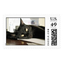 black cat postage