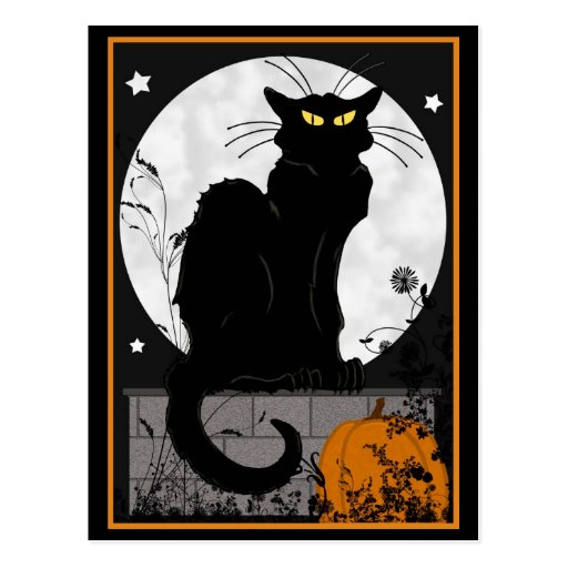 'Black Cat' Postcard