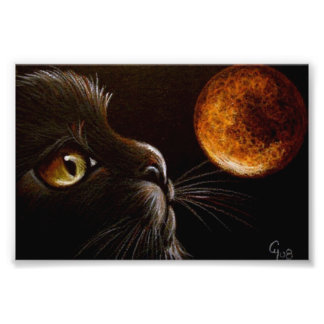 BLACK CAT PROFILE ORANGE MOON HALLOWEEN NIGHT PHOTO PRINT