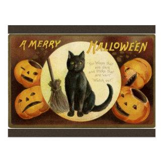 Black Cat Pumpkin Merry Halloween Postcard