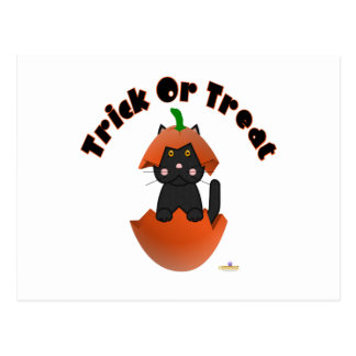 Black Cat Pumpkin Trick Or Treat Postcard