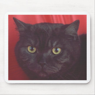 Black Cat - RED Mouse Pad