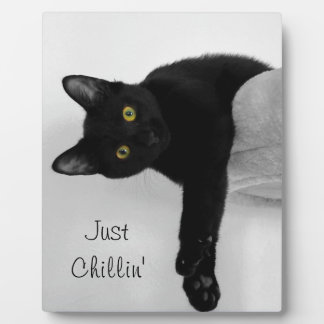 Black Cat relaxing on couch Plaque