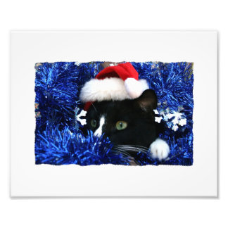 Black Cat, Santa hat, blue tinsel, ready to pounce Photo Print
