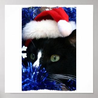 Black Cat Santa hat blue tinsel ready to pounce Poster