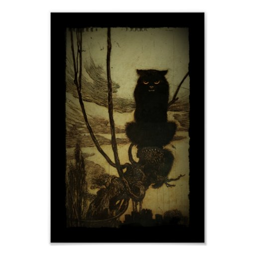 Black Cat Scowling Poster