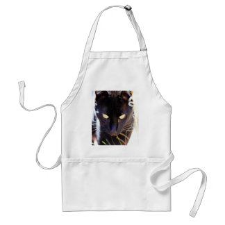 black cat search for love adult apron