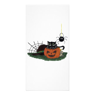 Black Cat sits on a Jack o Lantern with Spider Card