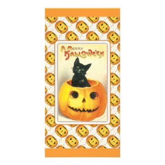 Black cat sitting in a pumpkin - halloween design card