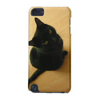 Black Cat Sitting on a Hardwood Floor iPod Touch 5G Covers