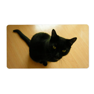Black Cat Sitting on a Hardwood Floor Label