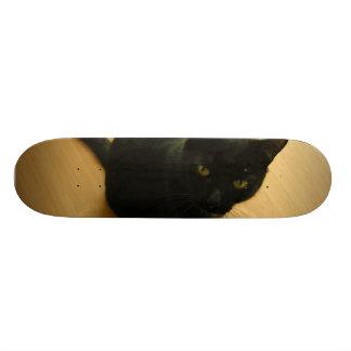 Black Cat Sitting on a Hardwood Floor Skateboard Deck