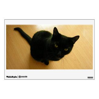Black Cat Sitting on a Hardwood Floor Wall Decal