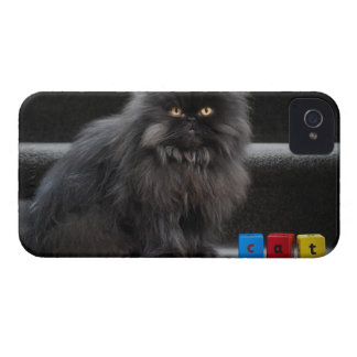 Black cat sitting on stairs by building blocks. iPhone 4 cover