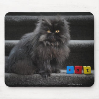 Black cat sitting on stairs by building blocks. mouse pad