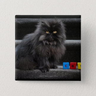 Black cat sitting on stairs by building blocks. pinback button