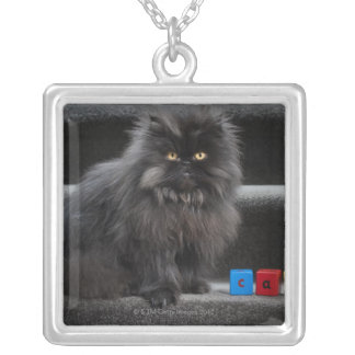 Black cat sitting on stairs by building blocks. silver plated necklace